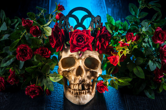 The human skull is in flowers. A skull with a wreath of roses.