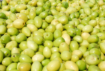 Fresh green zizyphus in pile in the harvest season