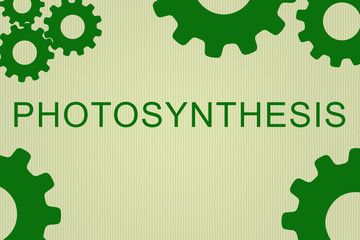 Photosynthesis - biological concept