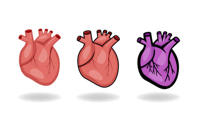 Set of human heart icons in flat style, vector