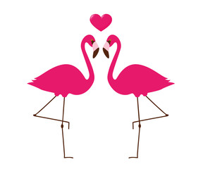 zwei sich liebende pinke flamingos