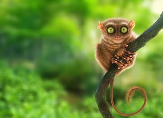 Tarsier monkey (Tarsius Syrichta) in natural jungle environment, Philippines. Digital art.