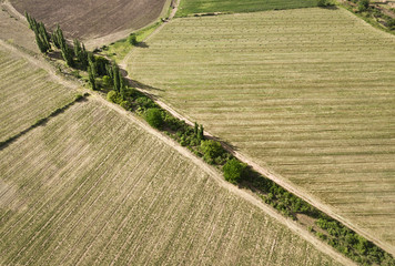 Farm lands and trees, landscape aerial view from above with a drone