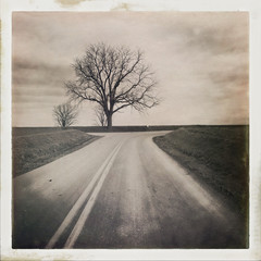 Antique style Sepia prints of  Country Roads