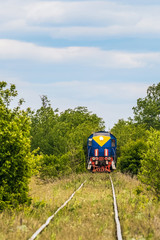 Locomotive train traveling on single-track railroad in a green trees