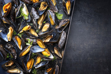 Traditional barbecue Italian blue mussel in white wine as top view in a tray with copy space right