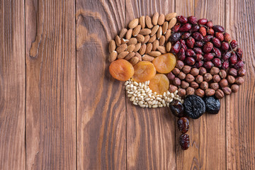 Human brain is made of dried apricots and nuts on a wooden table.   Concept of healthy food.