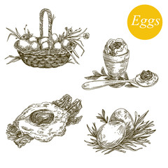 Healthy food. Set of eggs. Engraving style. Vector illustration.