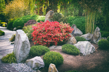 japanese garden wit big stones and pavement, chinese garden in summer Wall mural