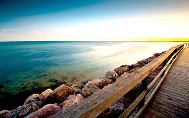 Sea Coast Boards I