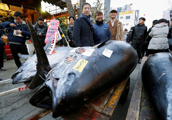 LEOC Co's Chairman, CEO and President Onodera, who runs a chain of sushi restaurants, poses with a 405 kg bluefin tuna outside Tsukiji fish market in Tokyo