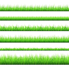 Spring green grass  borders  set  isolated on white background.
