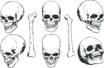 Hand drawn realistic human skulls and bones from different angles. Monochrome vector illustration on white background.
