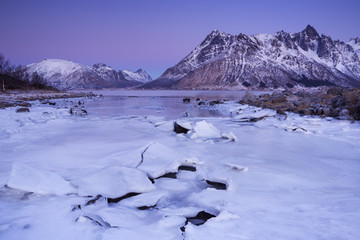 Fototapete - Mountains over a fjord in winter on the Lofoten, Norway