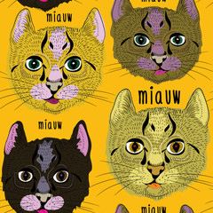 Various cute cats seamless pattern. Vector illustration on orange background