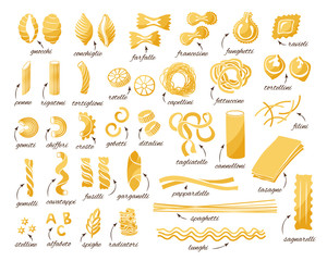 Pasta collection. Set of different type of pasta.