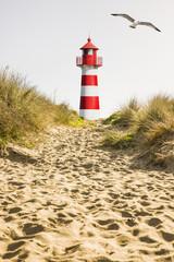 Garden Poster Lighthouse Rot/Weißer Leuchtturm