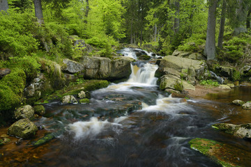 Germany, Lower Saxony, Harz, Waterfall of the mountain stream Warme Bode, Lower Bodefall