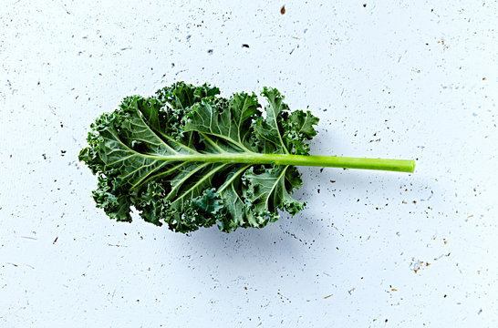 Fresh green kale leaf