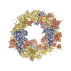 Watercolor illustration of wreath of grapes. Hand drawn watercolor illustration.