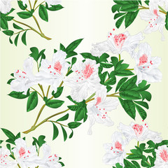 Seamless texture white rhododendron twig with flowers and leaves vintage  vector illustration editable hand draw