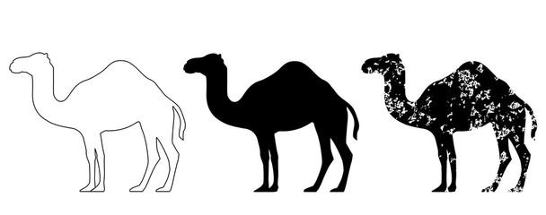Camel set black white grunge vector eps 10
