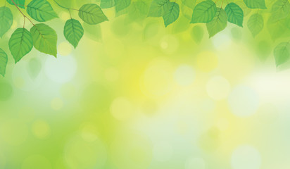 Vector green leaves border on green bokeh background.