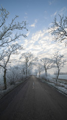 Country road on cold morning at sunrise