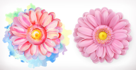 Spring pink flowers, Daisy, watercolor and 3d realism