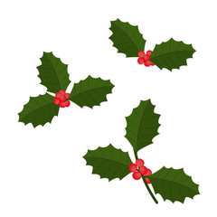 Christmas holly berry icon collection. Vector illustration