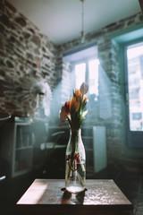 light rays getting through the window illuminating a tulip vase