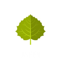 Aspen leaf icon. Flat illustration of aspen leaf vector icon isolated on white background