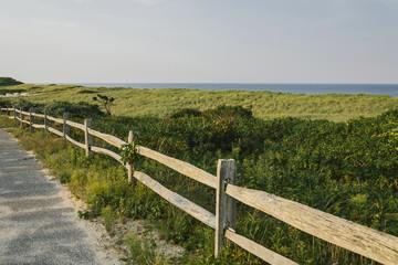 Dune Grass at Coast Guard Beach