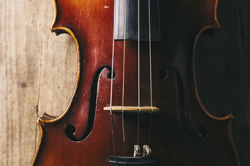 Close view of a violin strings and bridge