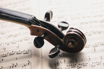Classical violin head on notes