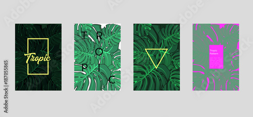 Tropic set of 4 templates  Summer vibes leaf background  Vector