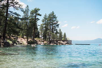 Clear Blue Tree-Lined Shore at Lake Tahoe