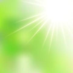 Spring Green Sunshine Soft Focus Burst - Vector Blurred Radiant Sun Rays