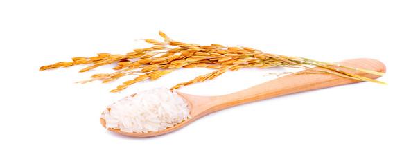 white rice (Thai Jasmine rice)unmilled rice isolated on white background