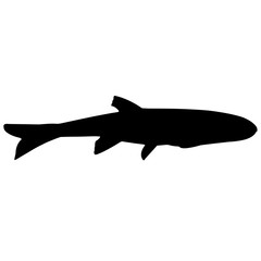 Minnow Silhouette Vector Graphics
