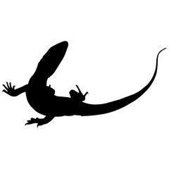 Monitor lizard Silhouette Vector Graphics