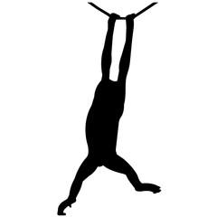 Orangutan Silhouette Vector Graphics