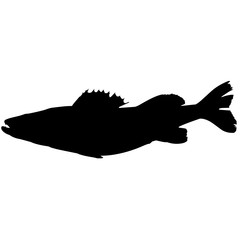 Perch Silhouette Vector Graphics