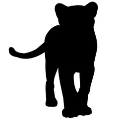 Puma Silhouette Vector Graphics