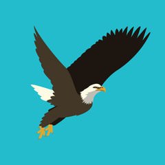 eagle vector illustration   flat style profile