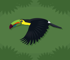 Toucan Illustration Cartoon Over Green Background
