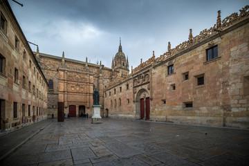 Universidad de Salamanca, fachada de las Escuelas Mayores.