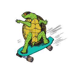 Cartoon character of turtle in glasses on green skateboard, hand drawn doodle sketch, isolated vector color illustration