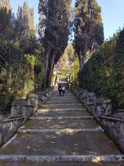 stone stairs in the gardens of the Roman villa