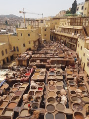 Traditional tanning of the skin in Fez, Morocco